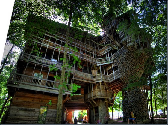 Huge tree house
